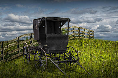 Amish Horse Buggy Poster by Randall Nyhof