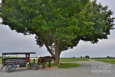 Amish Town Poster