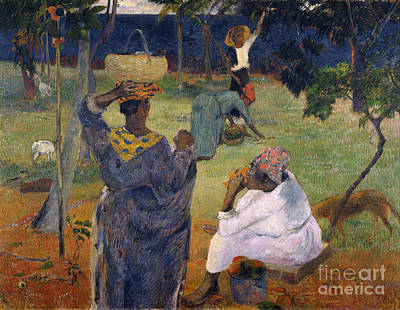Among The Magoes At Martinique Poster by Gauguin