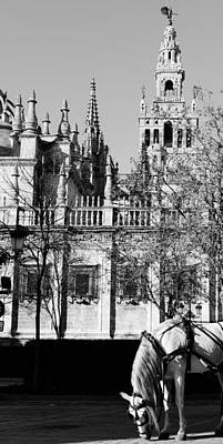 An Ancient View - Seville Giralda Poster by Andrea Mazzocchetti