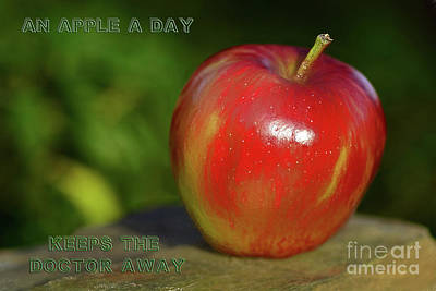 An Apple A Day By Kaye Menner Poster by Kaye Menner