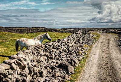 An Aran Horse Poster