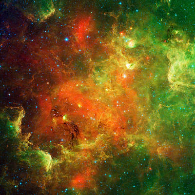 An Extended Stellar Family - North American Nebula Poster by Mark Kiver