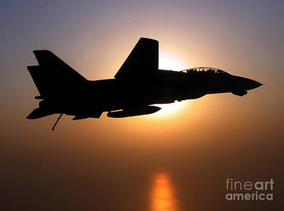 An F-14d Tomcat In Flight Poster by Stocktrek Images