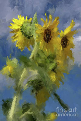 Poster featuring the photograph An Impression Of Sunflowers In The Sun by Lois Bryan