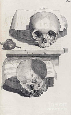 Anatomia Humani Corporis, Table 89, 1690 Poster by Science Source