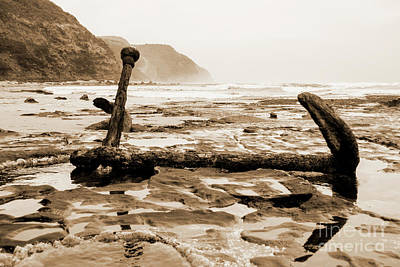 Poster featuring the photograph Anchor At Rest Sepia Tones by Angela DeFrias