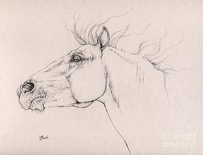 Andalusian Horse Drawing 2015 12 0a3 Poster by Angel Tarantella