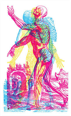 Andreae Vesalii Anatomy 1 Poster by Gary Grayson