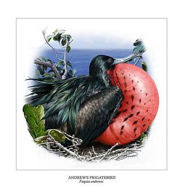 Andrews Frigatebird Fregata Andrewsi 3 Poster by Owen Bell