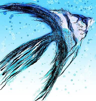 Angel Fish Art Poster