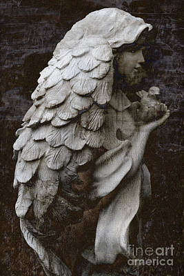 Angel With Dove Of Peace - Angel Art Textured Print Poster