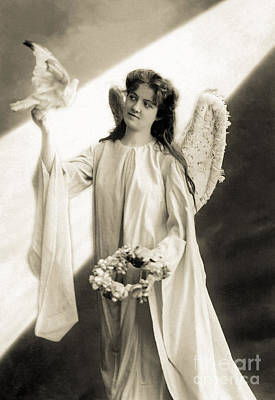 Angel With Dove Poster by R Muirhead Art