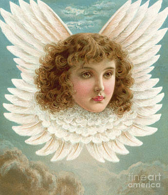 Angel's Head In Wings  Poster