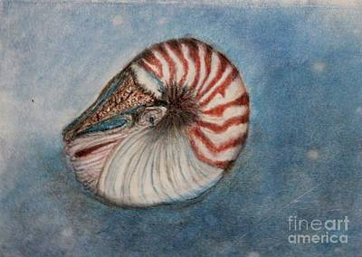 Angel's Seashell  Poster by Kim Nelson