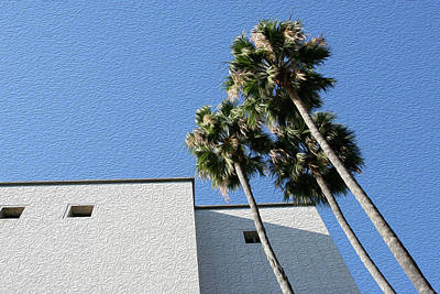 Angles And 3 Palm Tress Poster