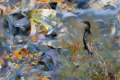 Anhinga Water Turkey In Abstract Poster by rd Erickson