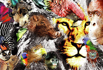 Animal Kingdom Collage Poster