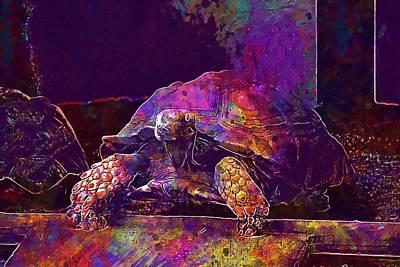 Poster featuring the digital art Animal Turtle Zoo  by PixBreak Art