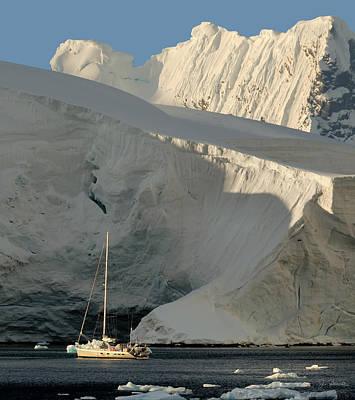 Antarctic No. 7 Poster by Joe Bonita