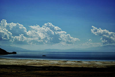 Poster featuring the photograph Antelope Island, Utah by Cynthia Powell