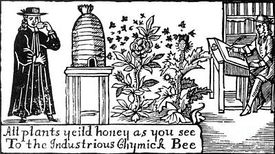 Apiculture, Beekeeping, 18 Century Poster