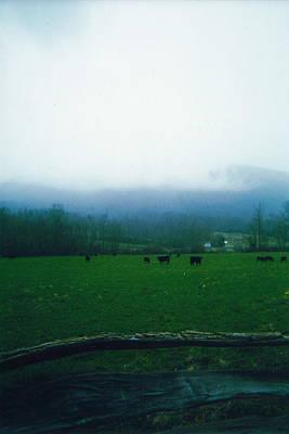 Appalachian Pasture Poster
