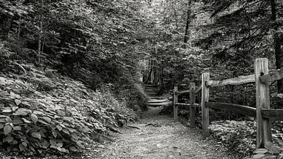 Appalachian Trail Trek Poster by Stephen Stookey