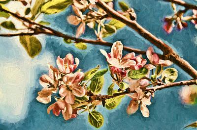 Apple Blossoms Poster by John K Woodruff