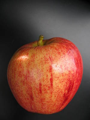 Poster featuring the photograph Apple by Lindie Racz