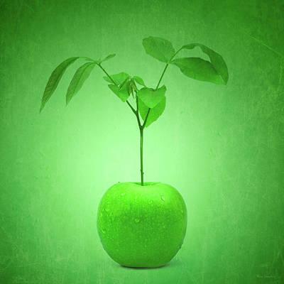 Apple Tree Poster by Wim Lanclus