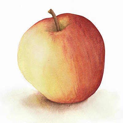 Apple Watercolor Poster by Taylan Apukovska