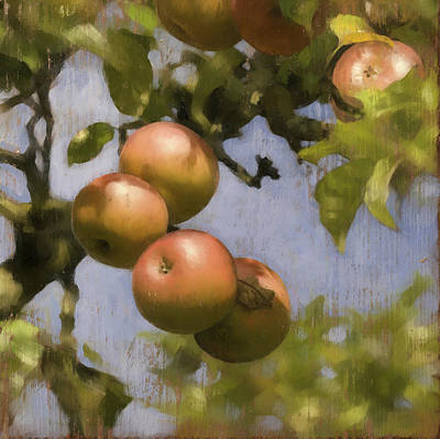 Apples On Wood Panel Poster