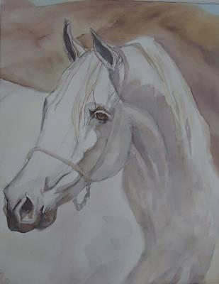 Arab Stallion In The Desert Poster