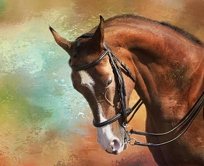 Poster featuring the photograph Arabian Horse by Theresa Tahara
