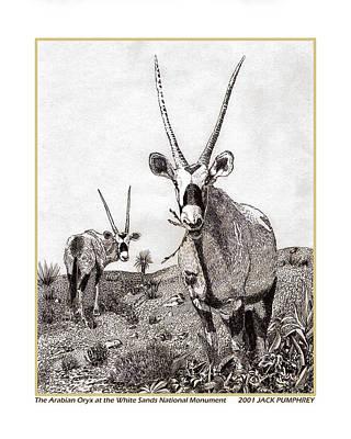 Arabian Orax Poster