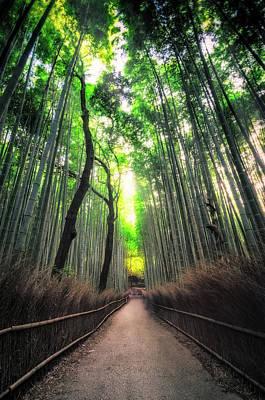 Arashiyama In Kyoto, Japan Poster
