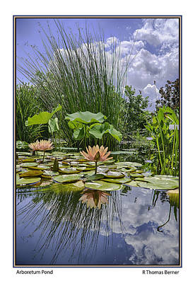 Poster featuring the photograph Arboretum Pond by R Thomas Berner