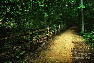 Arboretum Trail 2 Poster by Jeff McJunkin