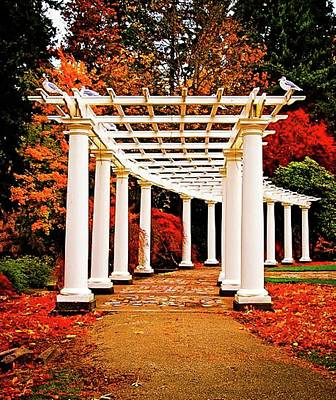 Arch Wapato Park Tacoma Wa Poster by Linda Chambers