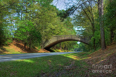 Arched Bridge Overpass  Poster by Larry Braun