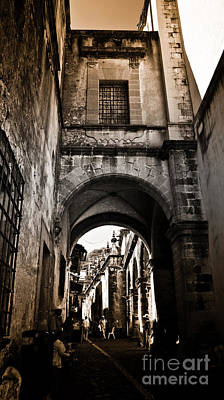 Archway In Taxco Poster by L E Jimenez