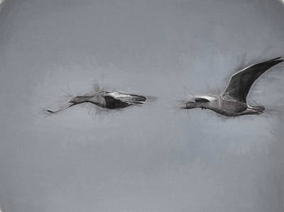 Aristic Painterly Black And White Geese Flight Poster by Leif Sohlman