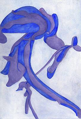 Aristolochia Poster