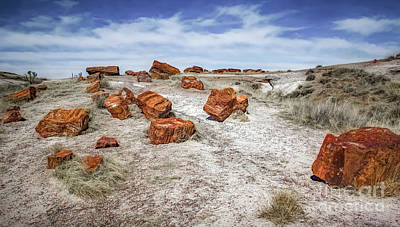 Arizona Fake Rocks Poster