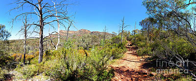 Poster featuring the photograph Arkaroo Rock Hiking Trail.wilpena Pound by Bill Robinson