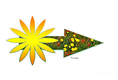 Arrow With Sun And Flowers Poster