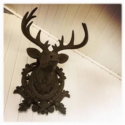Artificial Deer Antlers Poster