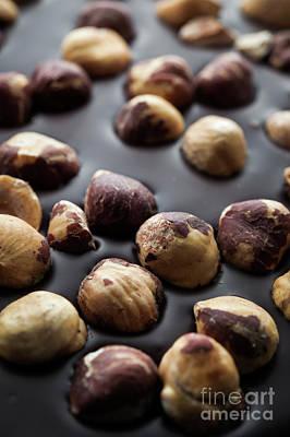 Artisanal Chocolate With Hazelnuts Poster