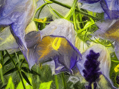 Artistic 2 Painterly Campanula Persicifolia Poster by Leif Sohlman